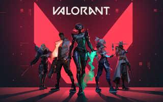 Valorant — Вышел игровой процесс за Sage