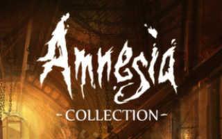 Читы и секреты Amnesia: A Machine for Pigs на бесконечные жизни и свет