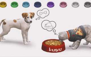 The Sims 4 — Гайд «Кошки и собаки» как создать питомца?