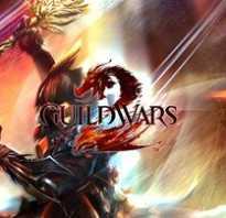 Guild Wars 2 шпионит за игроками